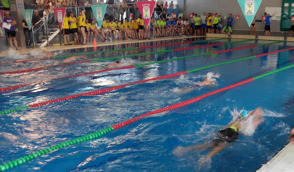 Más de doscientos nadadores participaron en el VI Trofeo Open Máster de Natación 'Ciudad de Torrelavega'